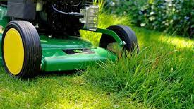 Coping With a Large Lawn