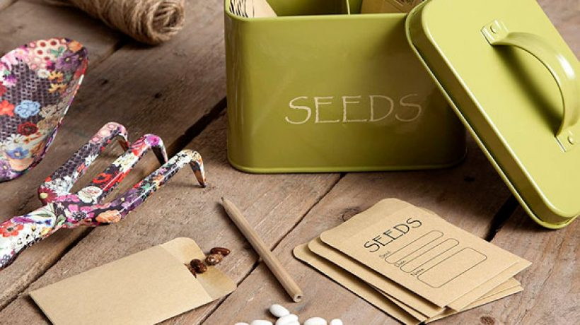 Can you save seeds for next year?