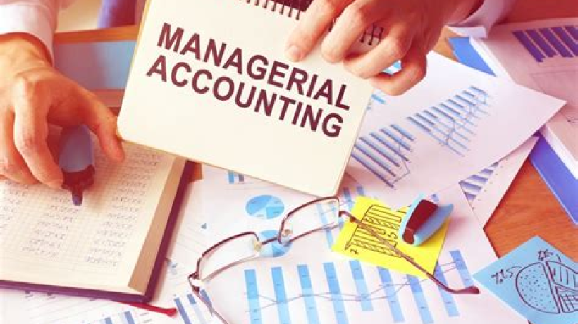 What are the different branches of accounting?